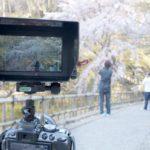 BMD Video Assistのフードを作る